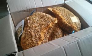 Eine Kiste voller Krokuszwiebeln...